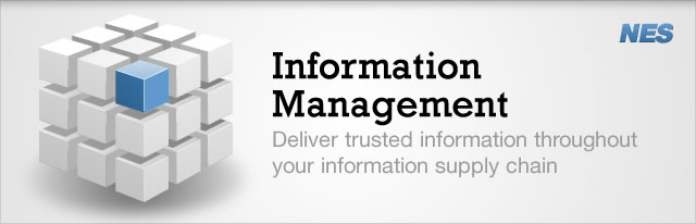 Deliver trusted information throughout your information supply chain